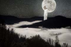 Journey From the Center of the Moon